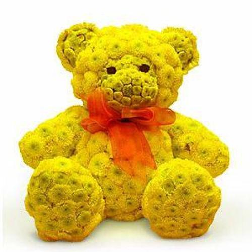 Купить на заказ Заказать Жёлтый мишка с доставкой по Павлодару  с доставкой в Павлодаре