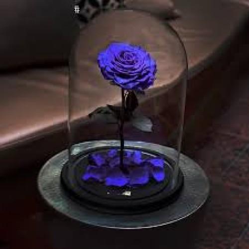 Купить на заказ Заказать Роза в колбе   фиолетовая с доставкой по Павлодару  с доставкой в Павлодаре