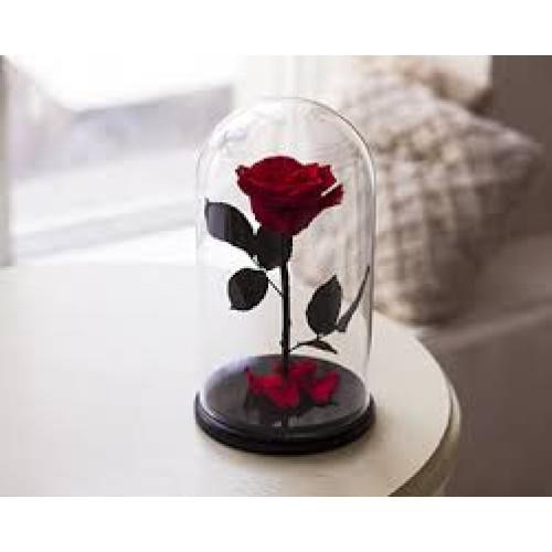 Купить на заказ Заказать Роза в колбе Красная с доставкой по Павлодару  с доставкой в Павлодаре